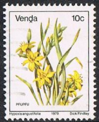 Venda SG14a 1983 Definitive 10c good/fine used